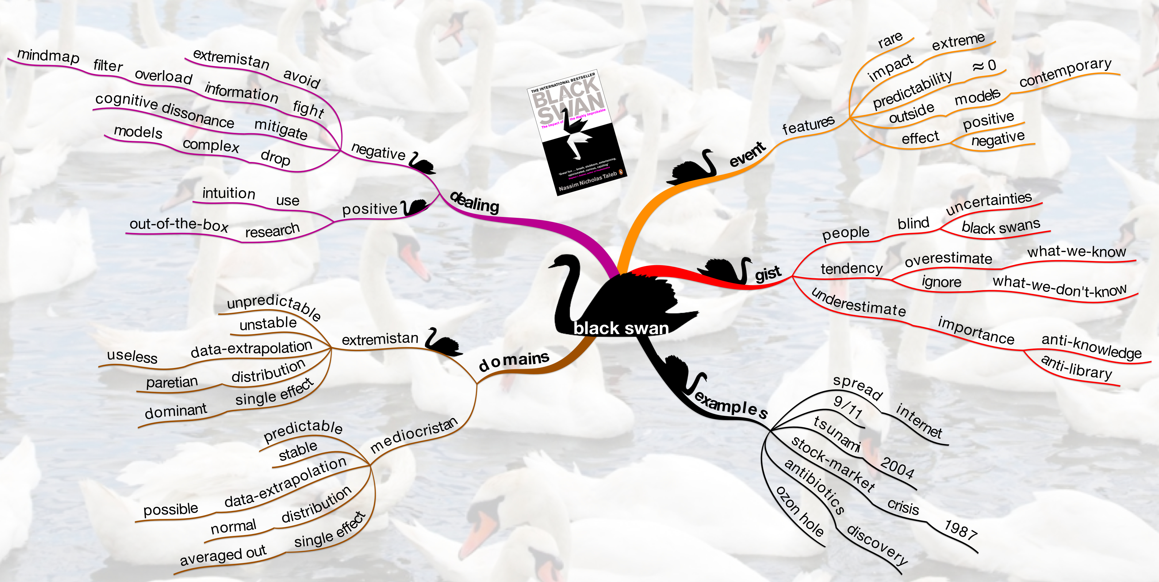 The black swan book mind map