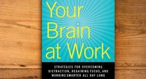 Ką turi veikti smegenys, kai mes dirbame